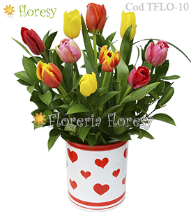 Modelo Full of Love - 10 tulipanes
